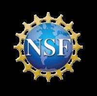 strategic_nsf500-02-e1466513237289